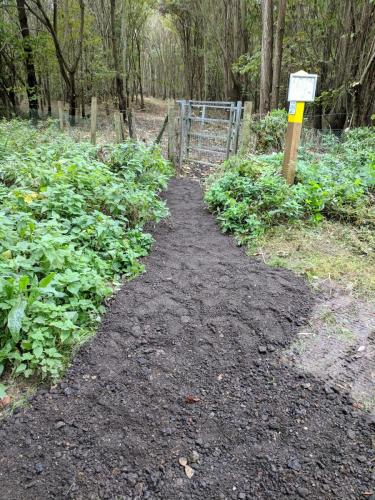 River Woodland Path improvements 5